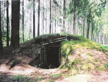 ביערות הפרטיזנים